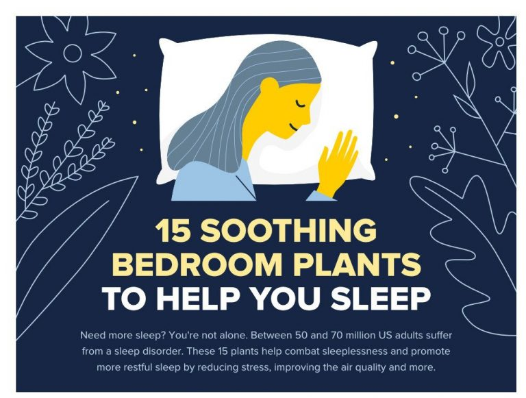 nature can help you sleep better