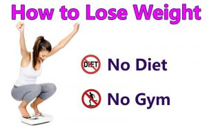 Lose Weight Without Diet or Exercise
